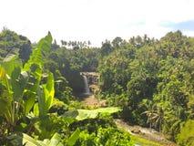 Водопад и лес - Бали Стоковые Изображения RF