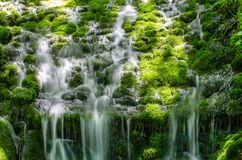 Водопад и мягкий мох стоковые фото