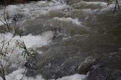 Водопад и пар Стоковые Изображения