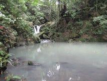 Водопад и пруд в лесе на садах Makiling ботанических, Филиппинах стоковая фотография