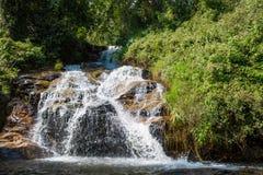 Водопад между утесами в лесе зеленого цвета джунглей Стоковые Изображения
