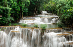 водопад национального парка стоковое фото rf