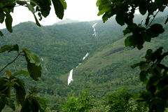 Водопад на заросший лесом горе Стоковое Фото