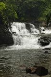 Водопад на taluka rajapur, Dist Ratnagiri, Индии Стоковые Фото