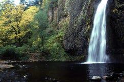 водопад Орегона Стоковые Фото