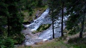 Водопад от реки Эльбы в гигантских горах акции видеоматериалы