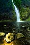 водопад пониа Орегона Стоковая Фотография