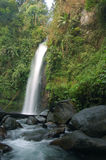 водопад портрета Стоковое Фото