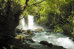водопад потока Стоковые Фотографии RF