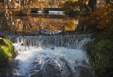 Водопад природного источника с лесом осени Стоковые Изображения