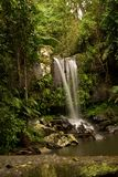 водопад пруда Стоковое Изображение RF