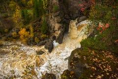 водопад пущи осени красивейший Стоковые Фото