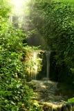 водопад пущи стоковые фотографии rf