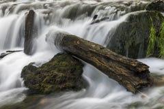 Водопад реки вербы Стоковое фото RF