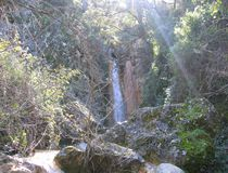 Водопад спрятанный лесом Стоковое Фото