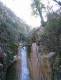 Водопад спрятанный лесом Стоковое фото RF