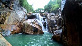 Водопад среди джунглей сток-видео