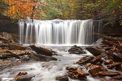 водопад цвета осени Стоковые Изображения RF