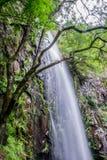 Водопад Augacaida в Panton, Галиции, Испании стоковое фото rf