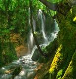 Водопад Bachkovsky, Болгария - панорама Стоковая Фотография RF