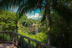 Водопад Chamarel, остров Маврикия стоковое изображение rf