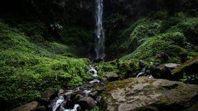 Водопад Coban Watu Ondo - Индонезия стоковые фото