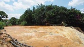 Водопад Dalat слона сток-видео