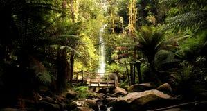 водопад erskine стоковая фотография