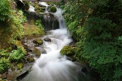 водопад gorge Стоковые Фото