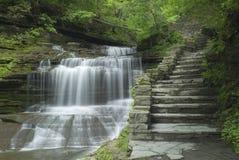 водопад gorge Стоковое Фото