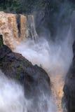 Водопад Gorge Barron Стоковые Изображения