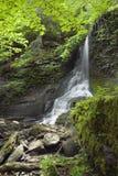 водопад grotto Стоковые Фото