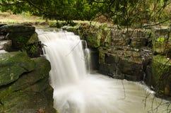Водопад Jesmond Dene Стоковое Фото