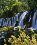 водопад jiuzhaigou Стоковые Фотографии RF