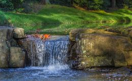 Водопад Miniture Стоковое Изображение