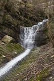 Водопад Mountview стоковые фотографии rf