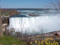 водопад niagara Стоковые Фотографии RF
