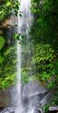 Водопад Phnom Kulen стоковые изображения rf