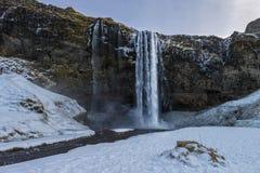 Водопад Seljalandsfoss в зиме без людей стоковое фото rf