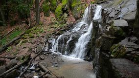 Водопад Skakalo в глубоком лесе бука сток-видео