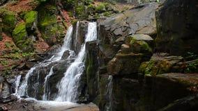Водопад Skakalo в глубоком лесе сток-видео
