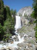 водопад yosemite Стоковые Фото