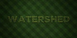 ВОДОРАЗДЕЛ - свежие письма травы с цветками и одуванчиками - представленное 3D изображение неизрасходованного запаса королевской  Стоковая Фотография RF