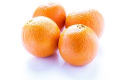4 военноморских апельсина на белизне Стоковое Фото