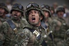 Военно-морской флот морских пехотинцов стоковое фото