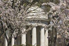 Военный мемориал DC весной Стоковые Фото