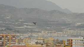 Военный самолет летая над зданиями в airshow видеоматериал