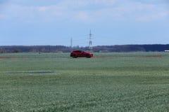 Вождение автомобиля в одичалом Стоковое Изображение RF