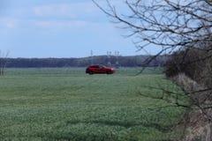 Вождение автомобиля в одичалом Стоковая Фотография