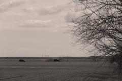 Вождение автомобиля в одичалом Стоковые Изображения